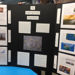 Project 5 - Designing an Exhibit about the Anthropocene - Team 8 - Blueprint